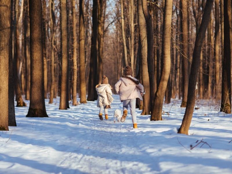 Що робити батькам, аби дитина не загубилася під час екскурсії до лісу