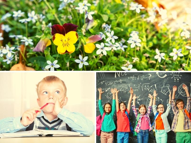 Навчальний тиждень № 33: літо наближається