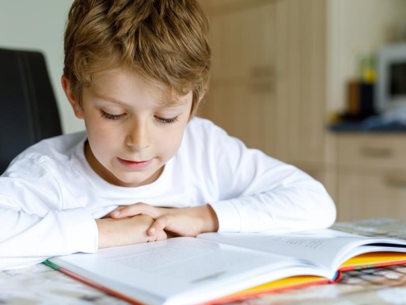 Книжкові рекомендації: що читати та слухати влітку молодшому школяру